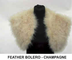 FEATHER BOLERO CHAMPAGNE.jpg (37245 bytes)
