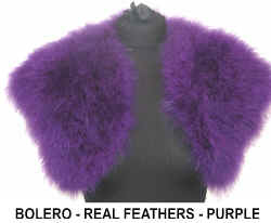 FEATHER BOLERO PURPLE PURPLE.jpg (30980 bytes)