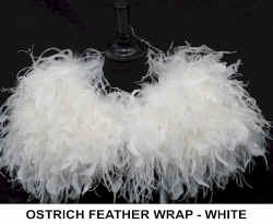 OSTRICH. FEATHER WRAP - WHITE.jpg (36067 bytes)